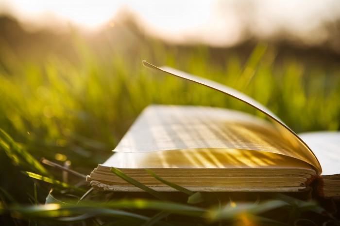 rejection renewal warren adler